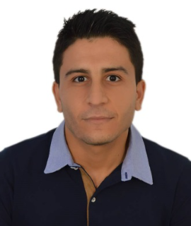 Hamza Bouzid, Speaker at Impact of eco-friendly processing solvents on the properties of organic solar cells