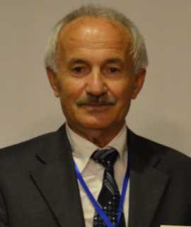 Osman Adiguzel, Speaker at